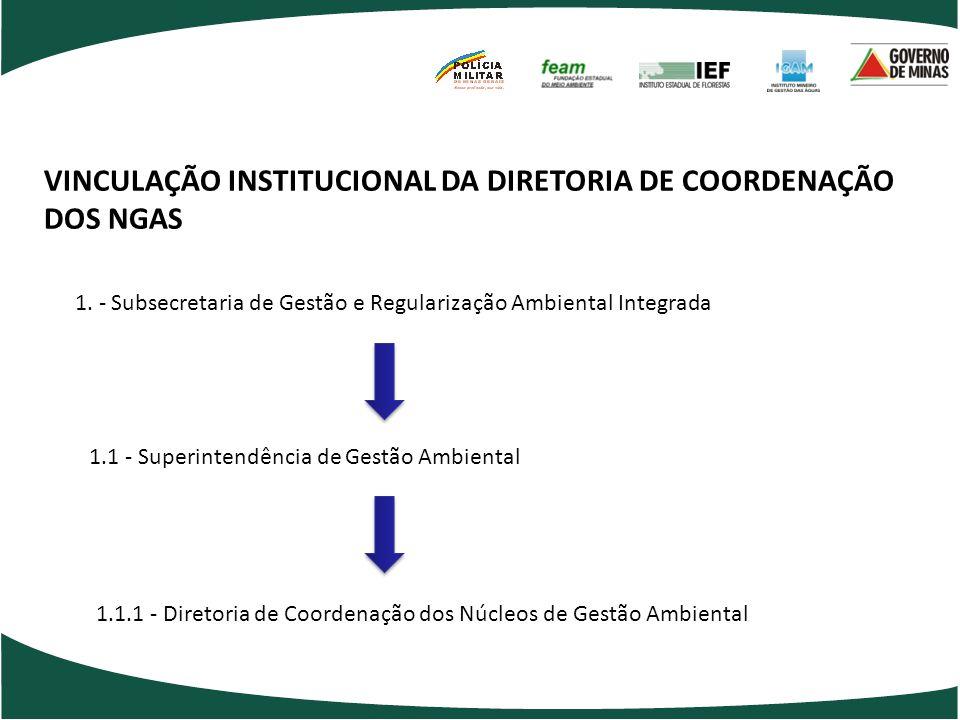 Gruta de Maquiné VINCULAÇÃO INSTITUCIONAL DA DIRETORIA DE COORDENAÇÃO DOS NGAS 1. - Subsecretaria de Gestão e Regularização Ambiental Integrada 1.1 -