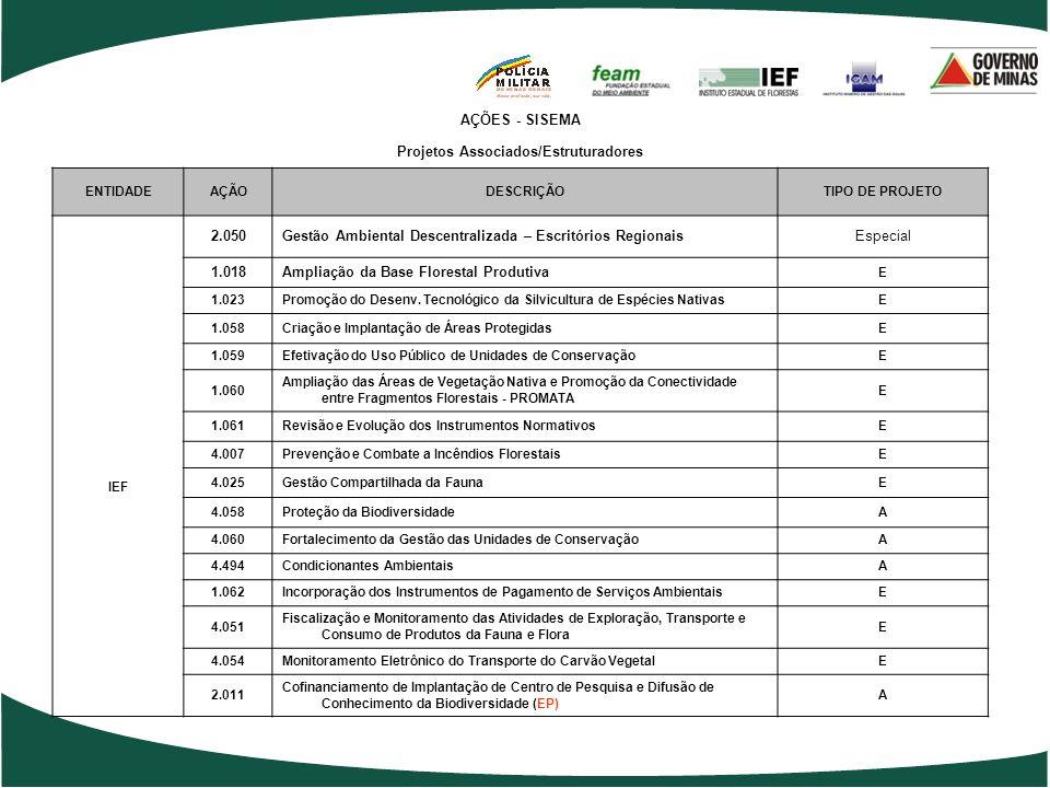 AÇÕES - SISEMA Projetos Associados/Estruturadores ENTIDADEAÇÃODESCRIÇÃO TIPO DE PROJETO FEAM 1.065 Desenvolvimento de Instrumentos de Incentivo à Gest