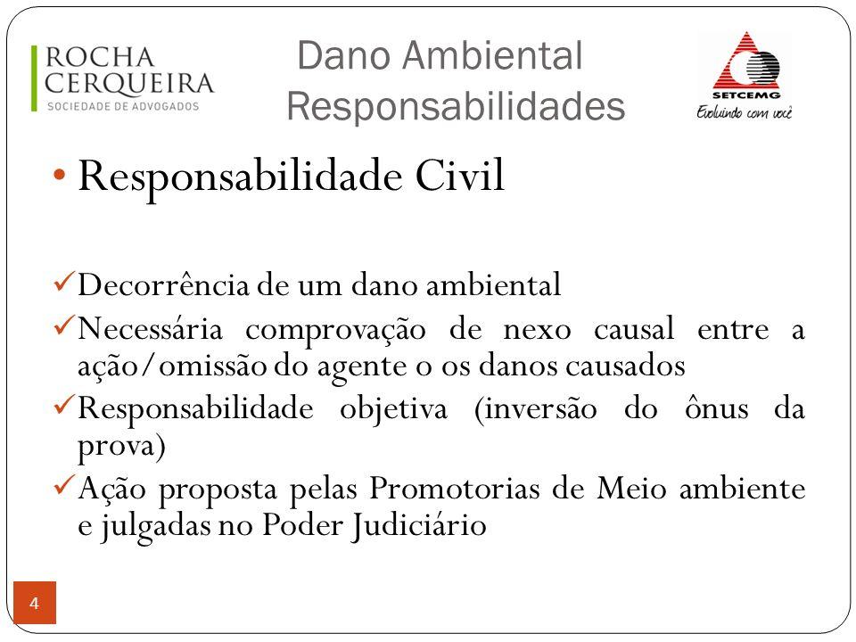 Dano Ambiental Responsabilidades 4 Responsabilidade Civil Decorrência de um dano ambiental Necessária comprovação de nexo causal entre a ação/omissão