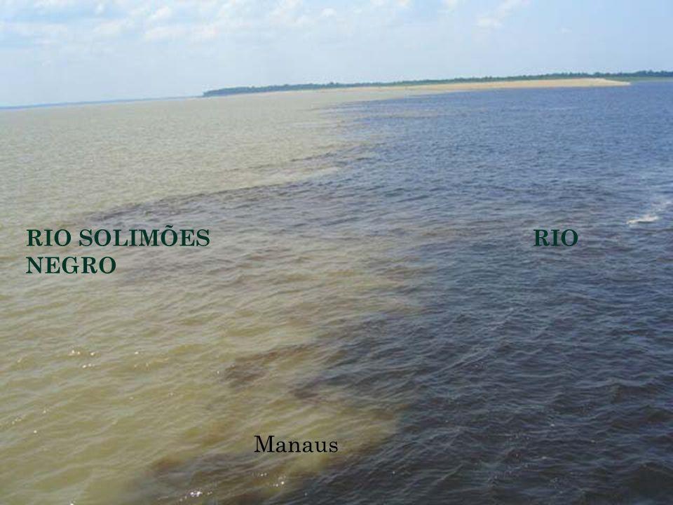 RIO SOLIMÕES RIO NEGRO Manaus