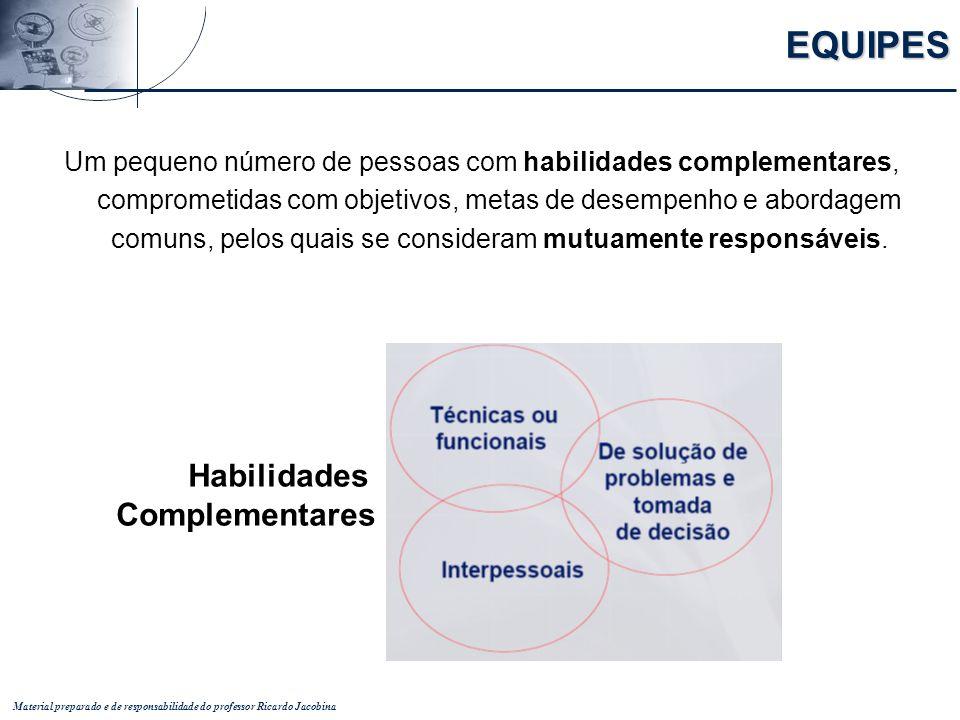 Material preparado e de responsabilidade do professor Ricardo Jacobina Um pequeno número de pessoas com habilidades complementares, comprometidas com