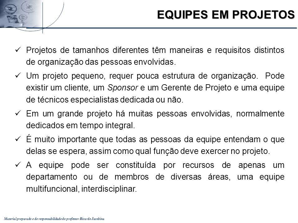 Material preparado e de responsabilidade do professor Ricardo Jacobina Projetos de tamanhos diferentes têm maneiras e requisitos distintos de organiza