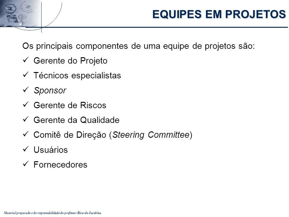 Material preparado e de responsabilidade do professor Ricardo Jacobina Os principais componentes de uma equipe de projetos são: Gerente do Projeto Téc