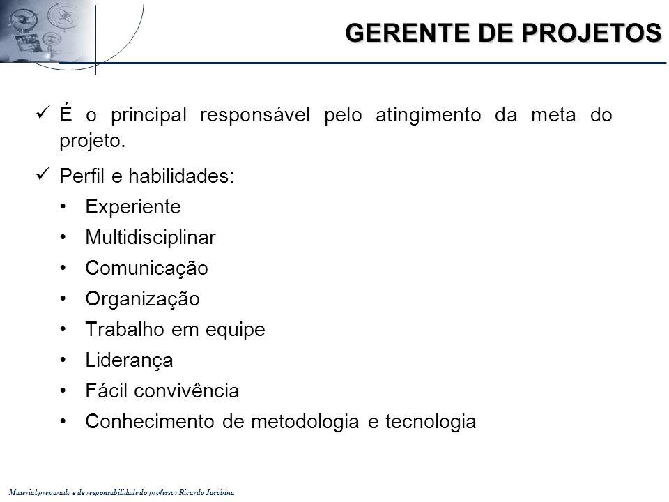 Material preparado e de responsabilidade do professor Ricardo Jacobina É o principal responsável pelo atingimento da meta do projeto. Perfil e habilid