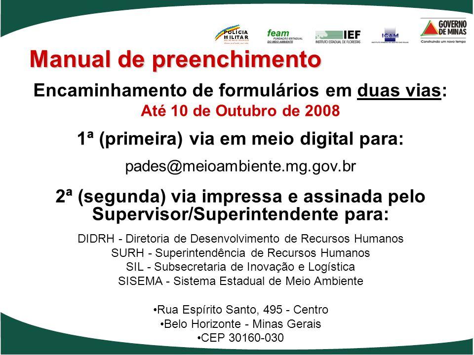 Manual de preenchimento Encaminhamento de formulários em duas vias: Até 10 de Outubro de 2008 1ª (primeira) via em meio digital para: pades@meioambien