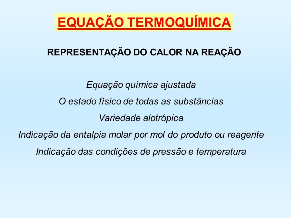 REAÇÃO ENDOTÉRMICA