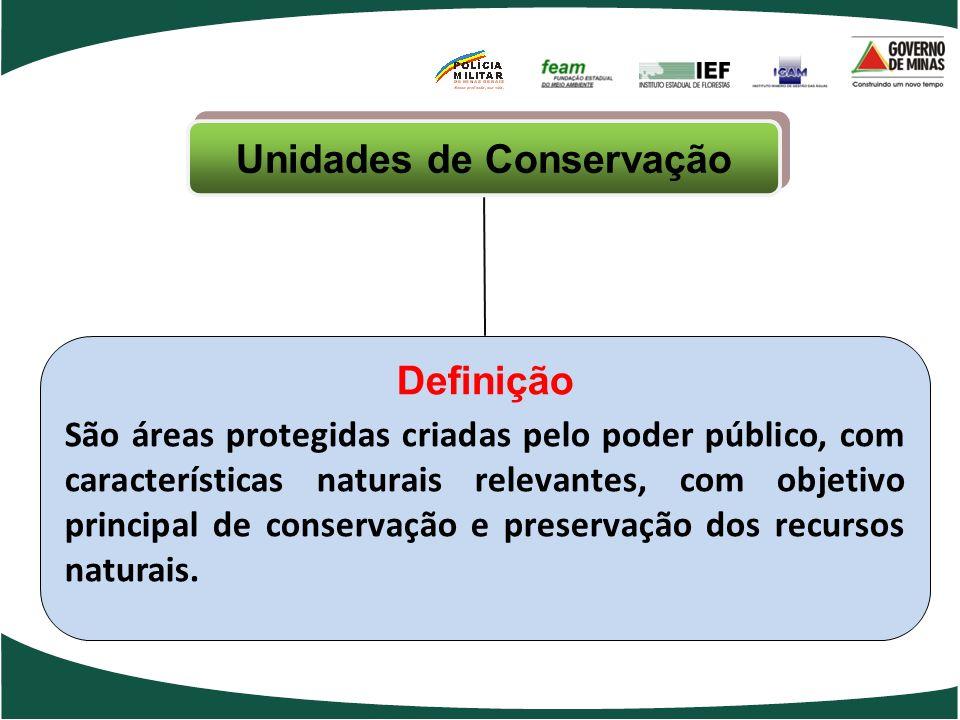 Unidades de Conservação Definição São áreas protegidas criadas pelo poder público, com características naturais relevantes, com objetivo principal de