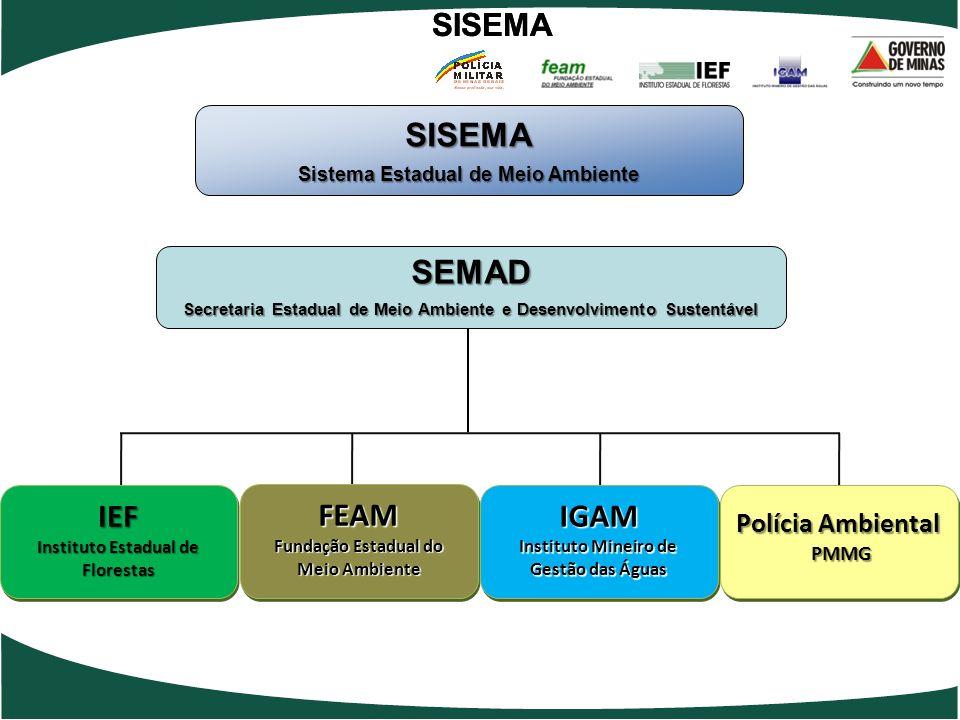 IEF Instituto Estadual de Florestas IEF FEAM Fundação Estadual do Meio Ambiente FEAM IGAM Instituto Mineiro de Gestão das Águas IGAM Polícia Ambiental