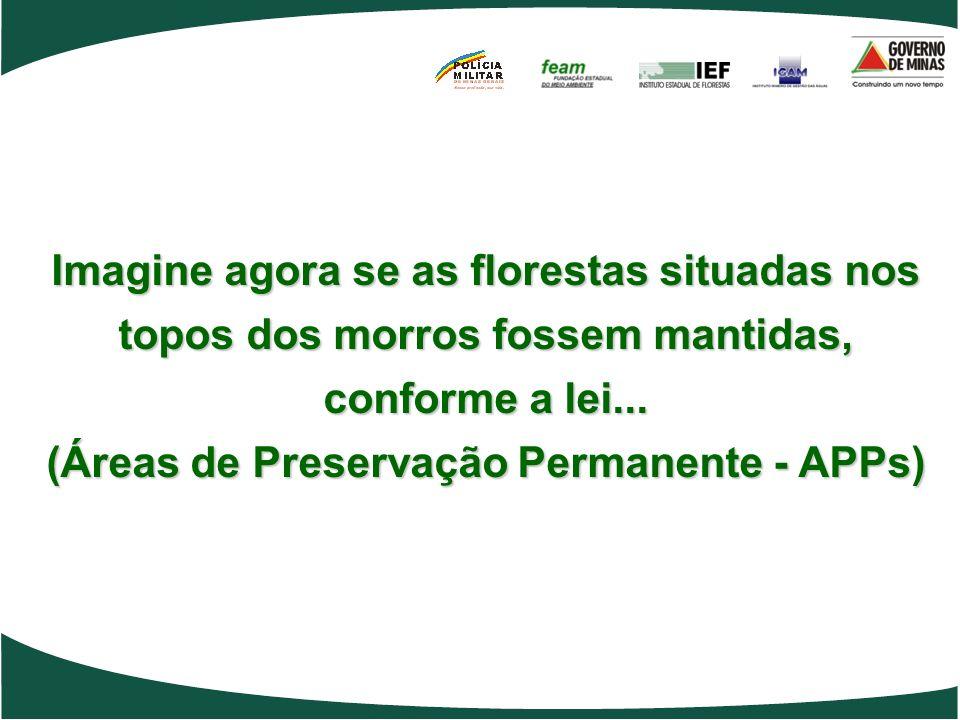Imagine agora se as florestas situadas nos topos dos morros fossem mantidas, conforme a lei... (Áreas de Preservação Permanente - APPs)