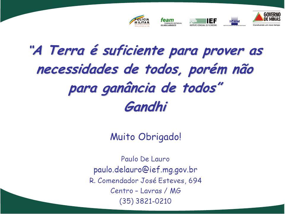 Muito Obrigado! Paulo De Lauro paulo.delauro@ief.mg.gov.br R. Comendador José Esteves, 694 Centro – Lavras / MG (35) 3821-0210 A Terra é suficiente pa