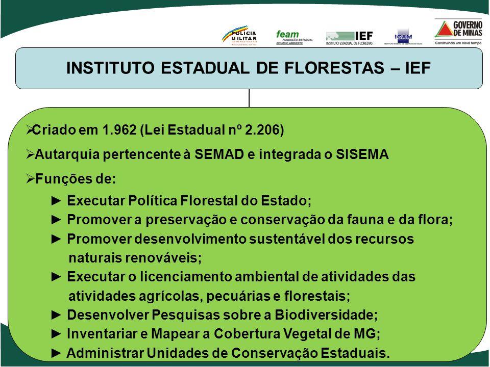 INSTITUTO ESTADUAL DE FLORESTAS – IEF Criado em 1.962 (Lei Estadual nº 2.206) Autarquia pertencente à SEMAD e integrada o SISEMA Funções de: Executar