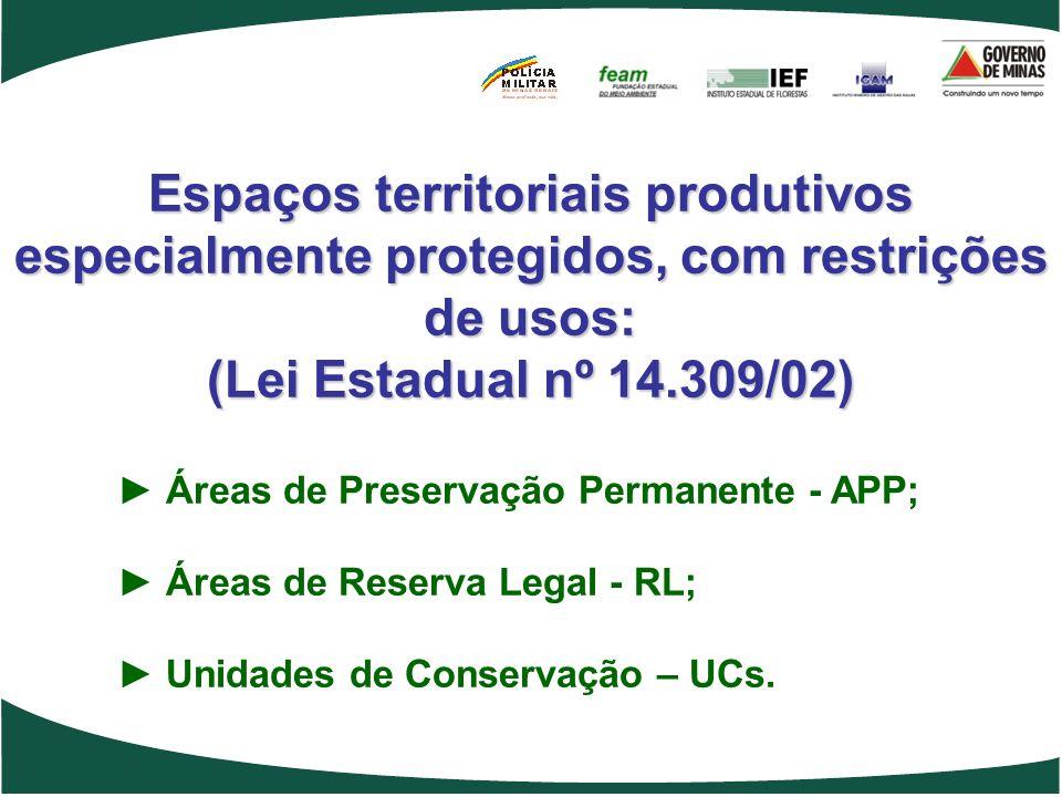 Espaços territoriais produtivos especialmente protegidos, com restrições de usos: (Lei Estadual nº 14.309/02) Áreas de Preservação Permanente - APP; Á