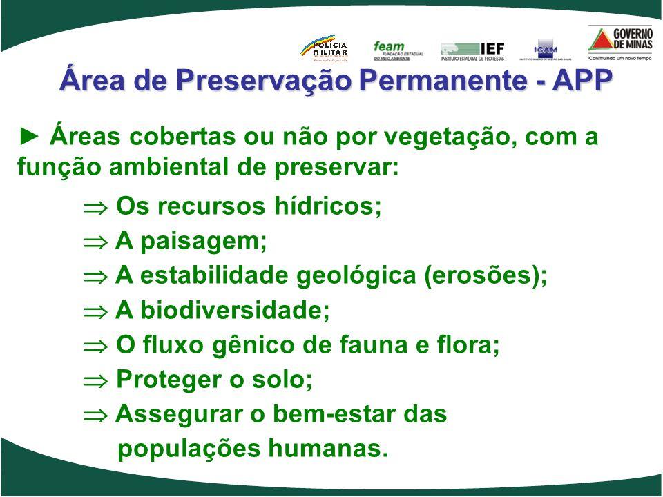 Área de Preservação Permanente - APP Áreas cobertas ou não por vegetação, com a função ambiental de preservar: Os recursos hídricos; A paisagem; A est