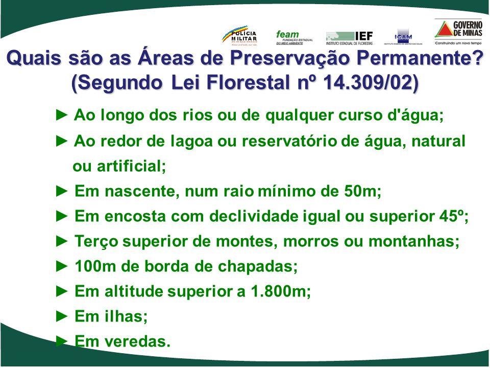 Quais são as Áreas de Preservação Permanente? (Segundo Lei Florestal nº 14.309/02) Ao longo dos rios ou de qualquer curso d'água; Ao redor de lagoa ou