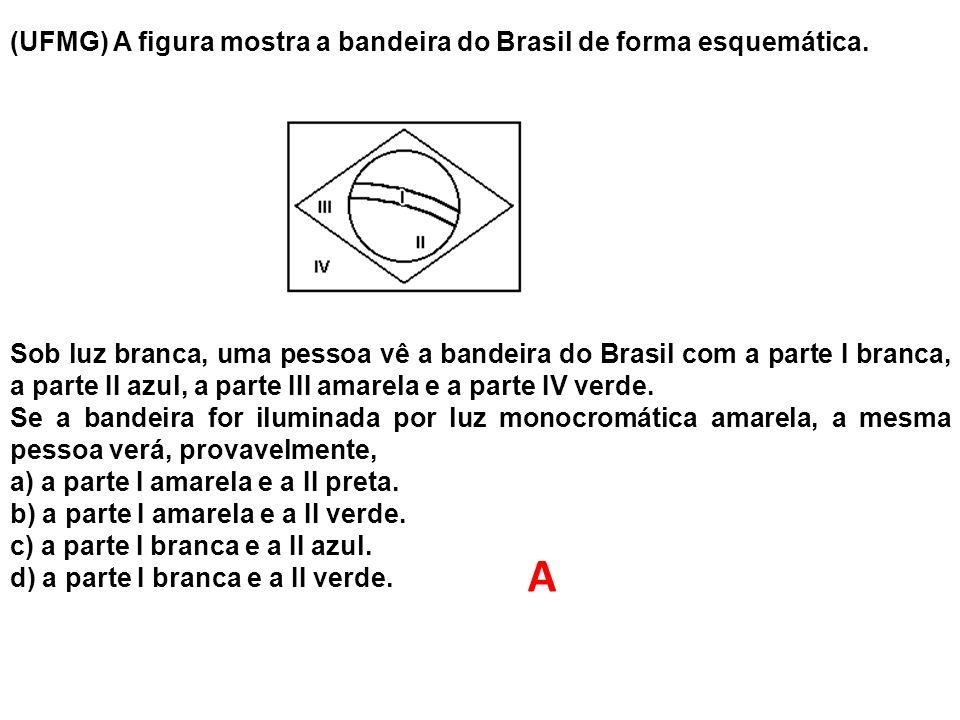 (UFMG) A figura mostra a bandeira do Brasil de forma esquemática. Sob luz branca, uma pessoa vê a bandeira do Brasil com a parte I branca, a parte II