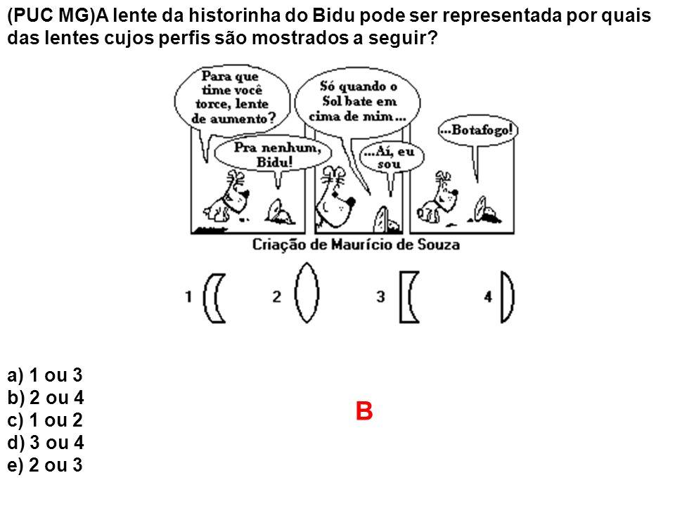 (PUC MG)A lente da historinha do Bidu pode ser representada por quais das lentes cujos perfis são mostrados a seguir? a) 1 ou 3 b) 2 ou 4 c) 1 ou 2 d)