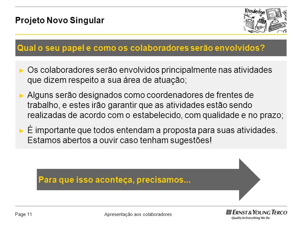 Apresentação aos colaboradoresPage 12 Projeto Novo Singular Assumir o compromisso de mudar.