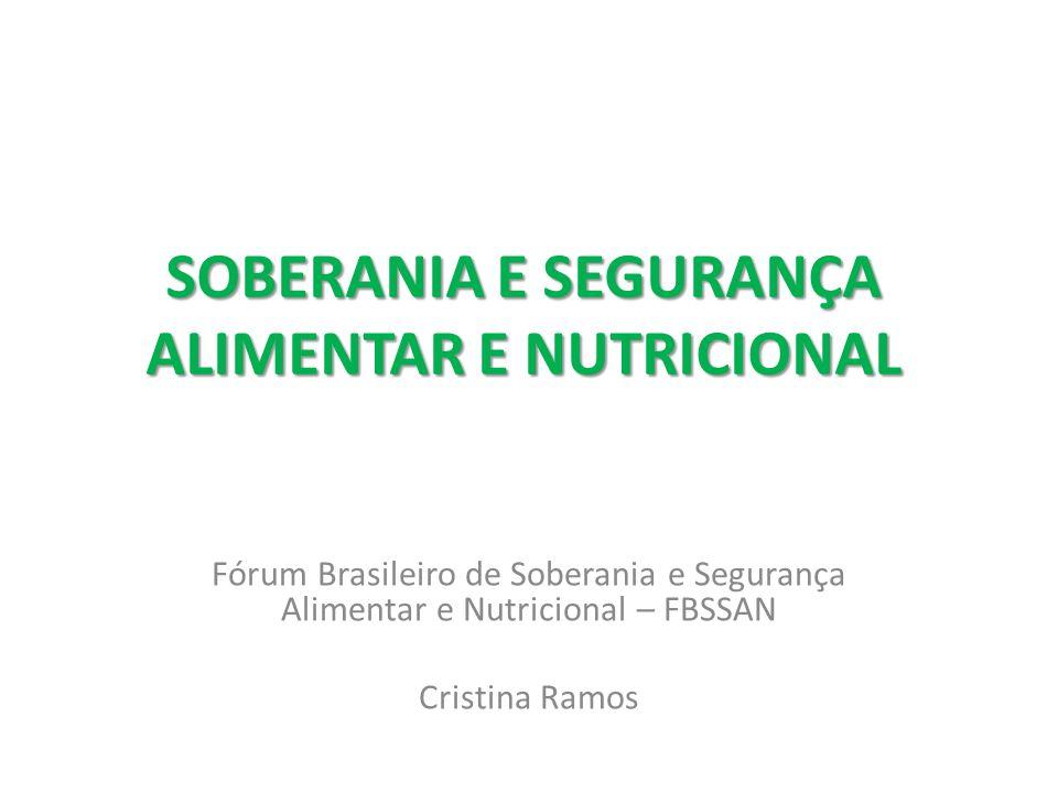 Apresentar a visão do FBSSAN a respeito da crise civilizatória que vivemos (incluindo crises econômica, socioambiental, climática, energética e alimentar) e sobre os problemas e impactos do modelo de desenvolvimento hoje dominantes no Brasil.