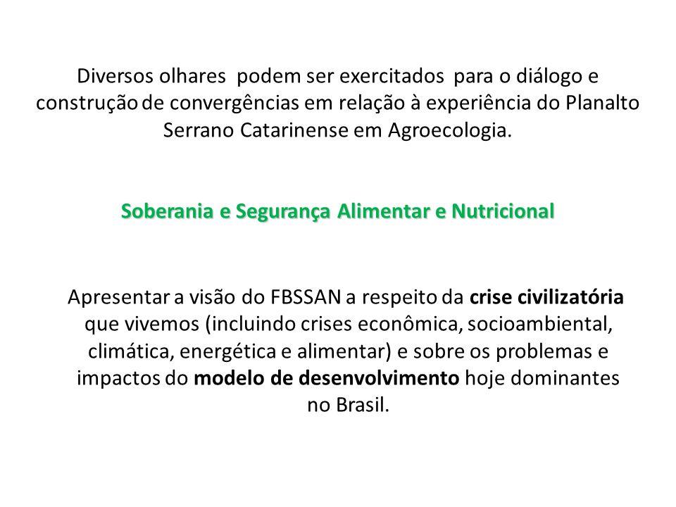 O atual sistema de produção e abastecimento de alimentos não considera a qualidade de vida da população.