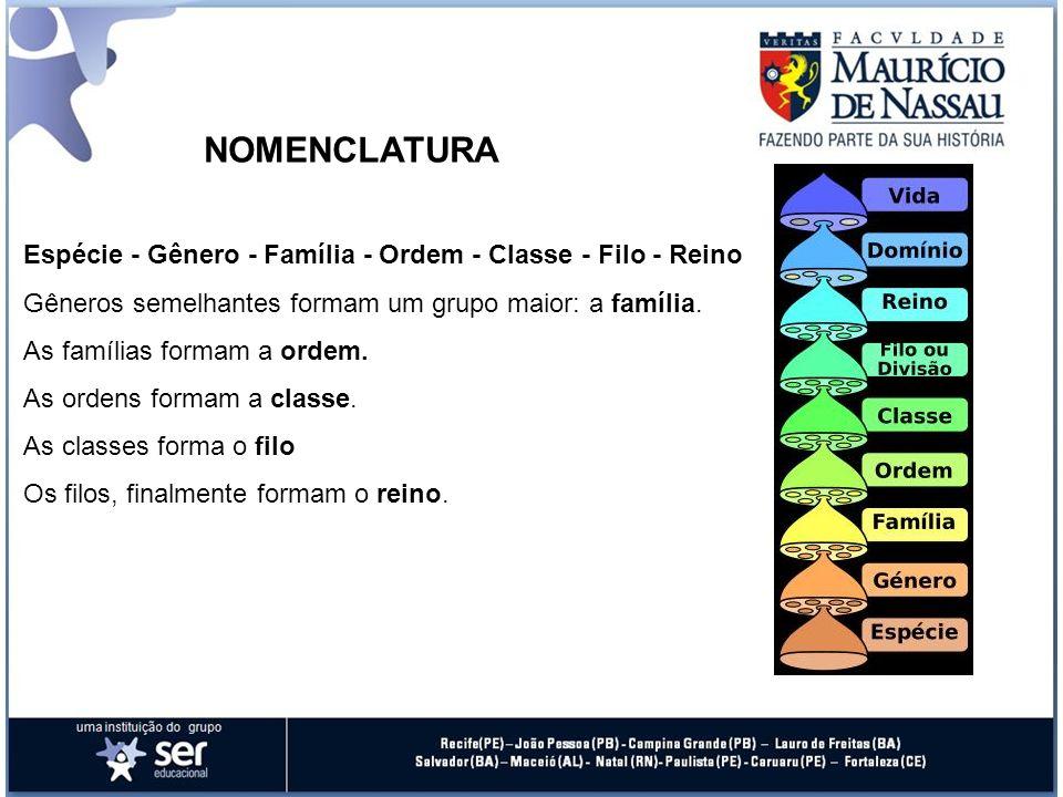 Espécie - Gênero - Família - Ordem - Classe - Filo - Reino Gêneros semelhantes formam um grupo maior: a família. As famílias formam a ordem. As ordens