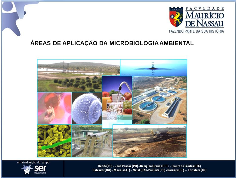 Engenheiro ambiental Estudar os microrganismos que desempenham um papel importante: na decomposição de matéria orgânica (compostagem), na reciclagem dos elementos químicos da natureza (ciclos biogeoquímicos), na biorremediação, no tratamento de águas, no tratamento de esgoto.