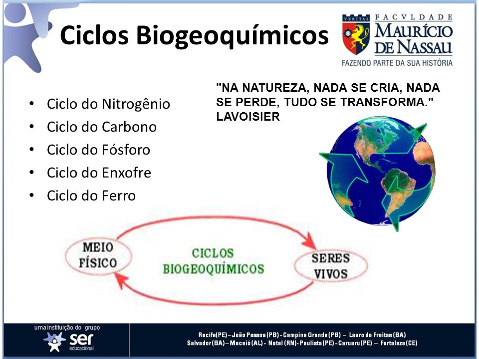 Ciclos Biogeoquímicos Ciclo do Nitrogênio Ciclo do Carbono Ciclo do Fósforo Ciclo do Enxofre Ciclo do Ferro