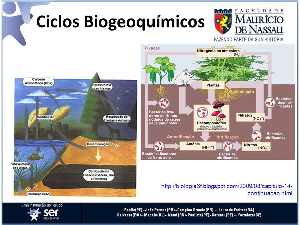 Ciclos Biogeoquímicos http://biologia3f.blogspot.com/2009/08/capitulo-14- continuacao.html