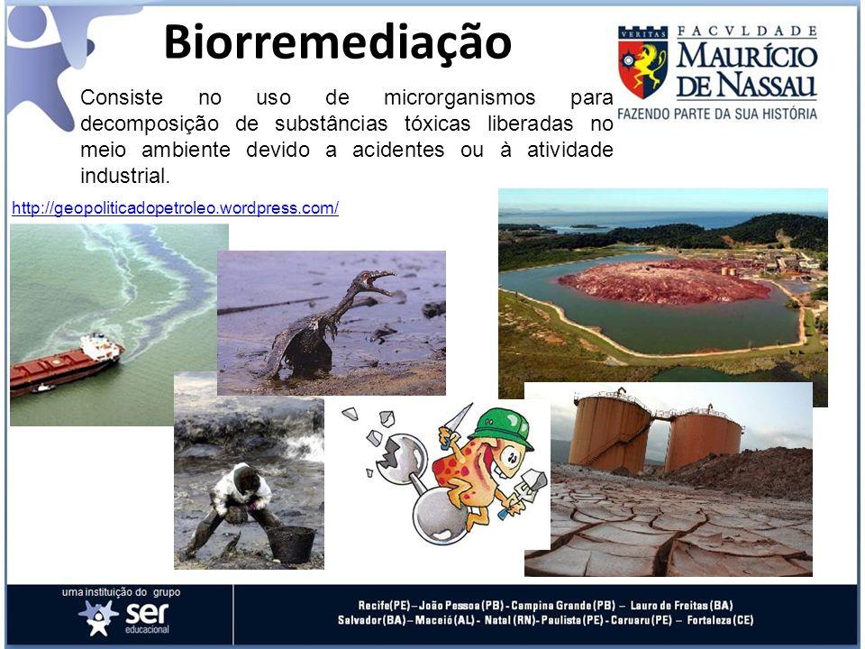 Biorremediação Consiste no uso de microrganismos para decomposição de substâncias tóxicas liberadas no meio ambiente devido a acidentes ou à atividade