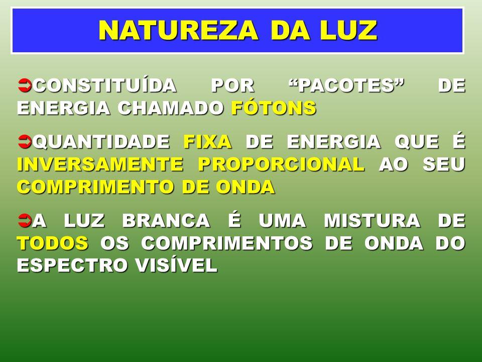 NATUREZA DA LUZ CONSTITUÍDA POR PACOTES DE ENERGIA CHAMADO FÓTONS CONSTITUÍDA POR PACOTES DE ENERGIA CHAMADO FÓTONS QUANTIDADE FIXA DE ENERGIA QUE É I
