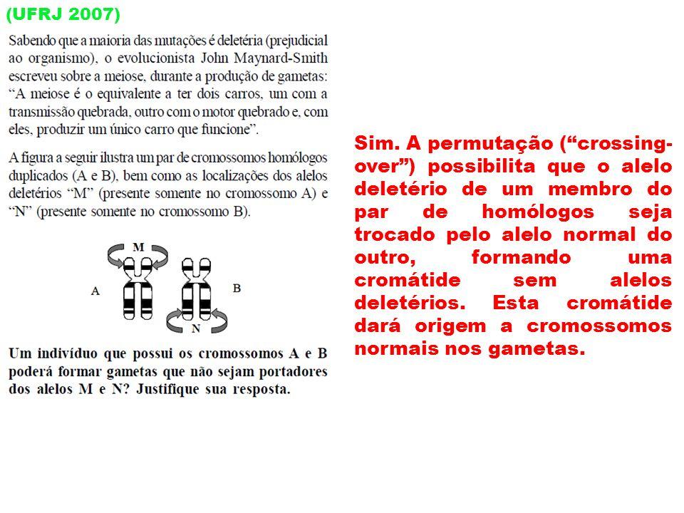 (UFRJ 2007) Sim. A permutação (crossing- over) possibilita que o alelo deletério de um membro do par de homólogos seja trocado pelo alelo normal do ou