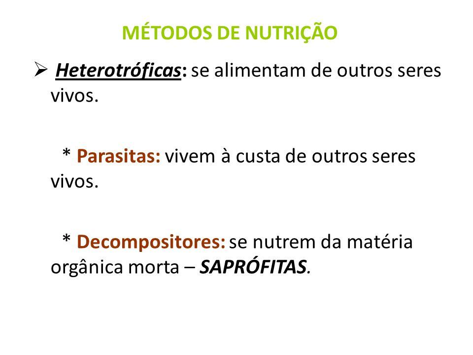 Heterotróficas: se alimentam de outros seres vivos. * Parasitas: vivem à custa de outros seres vivos. * Decompositores: se nutrem da matéria orgânica