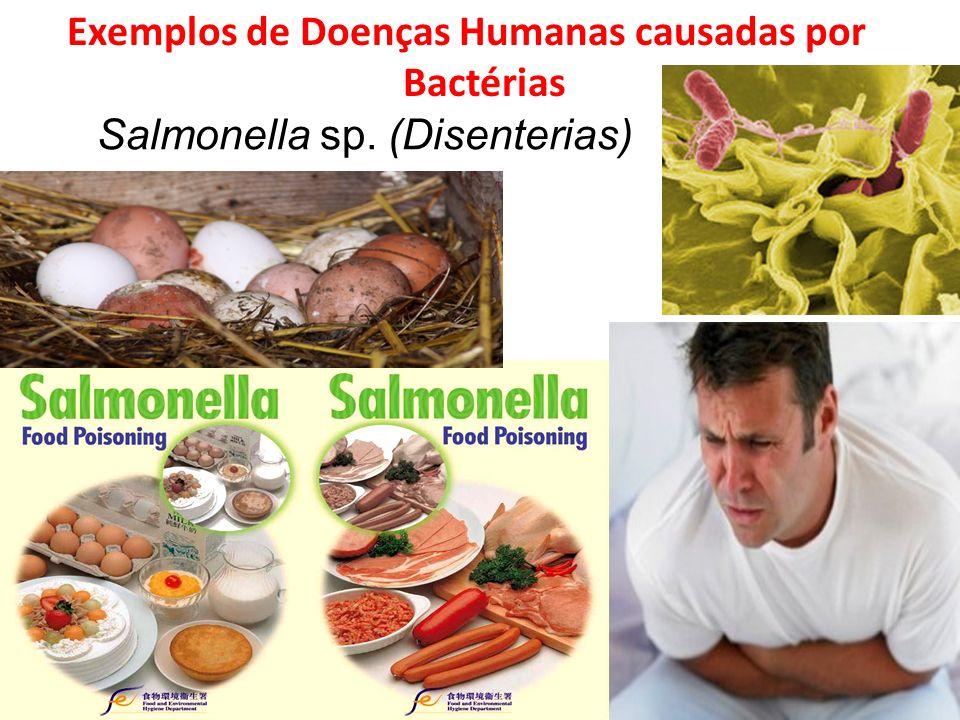 Exemplos de Doenças Humanas causadas por Bactérias Salmonella sp. (Disenterias)