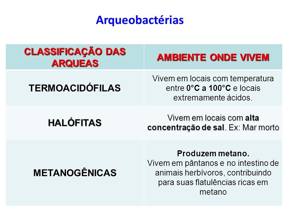 Arqueobactérias CLASSIFICAÇÃO DAS ARQUEAS AMBIENTE ONDE VIVEM TERMOACIDÓFILAS Vivem em locais com temperatura entre 0°C a 100°C e locais extremamente