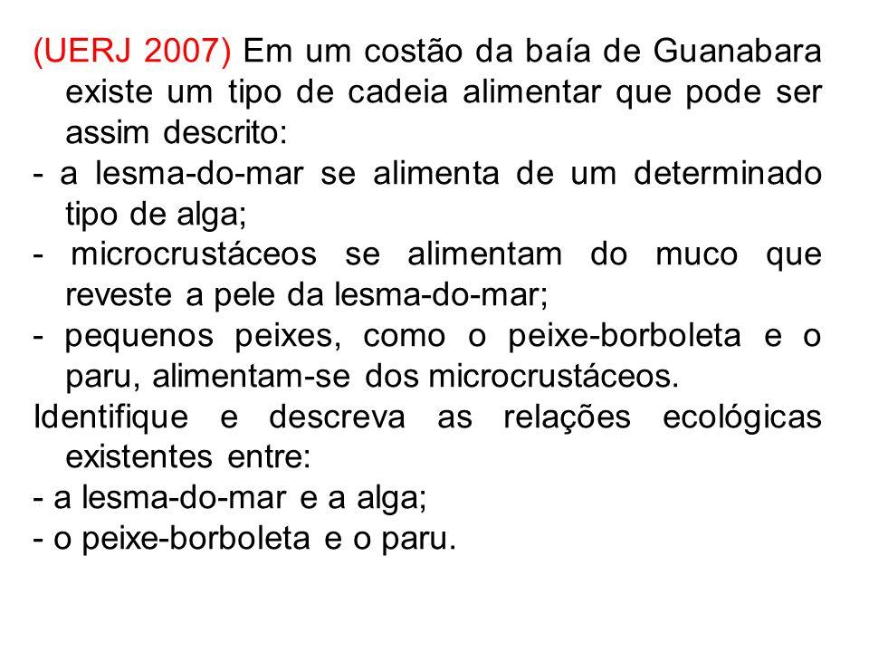 (UERJ 2007) Em um costão da baía de Guanabara existe um tipo de cadeia alimentar que pode ser assim descrito: - a lesma-do-mar se alimenta de um deter