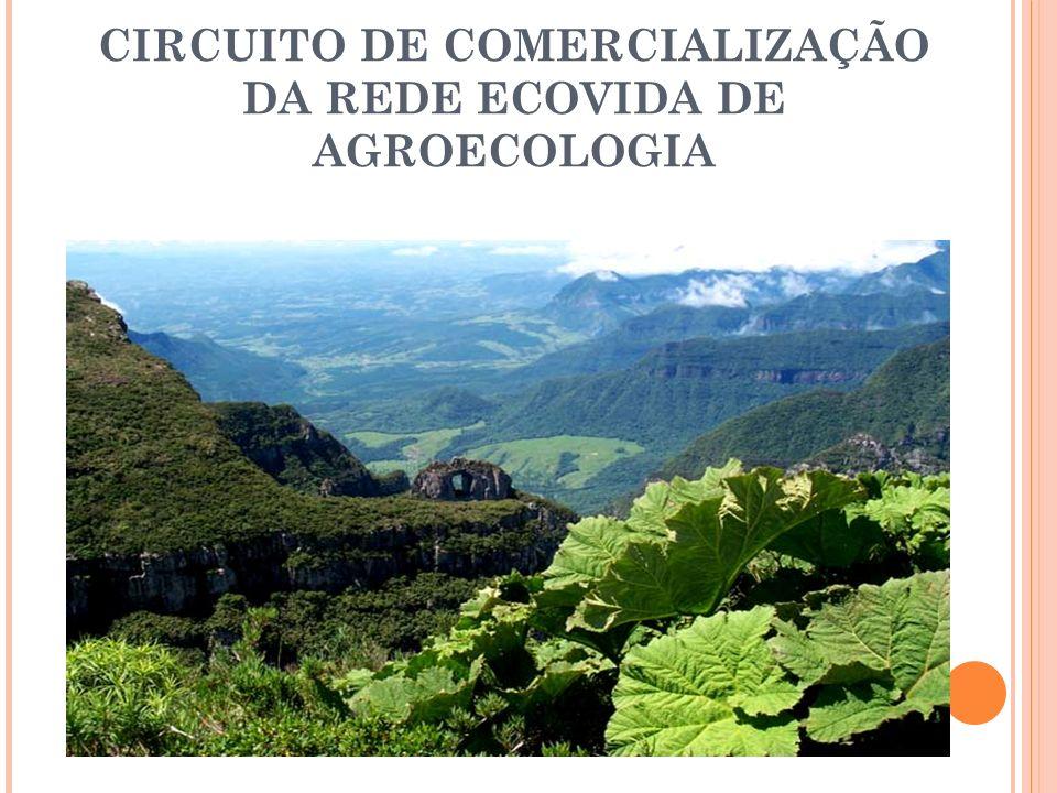 CIRCUITO DE COMERCIALIZAÇÃO DA REDE ECOVIDA DE AGROECOLOGIA