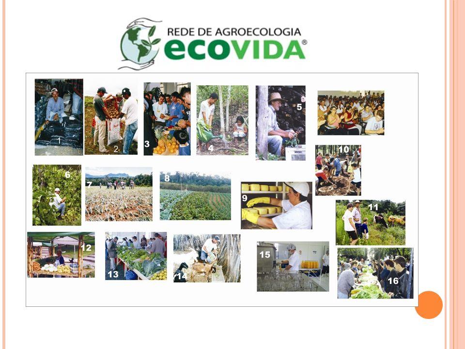 ESTAÇÃO LAGES - REDE DE AGROECOLOGIA DO TERRITÓRIO SERRA CATARINENSE