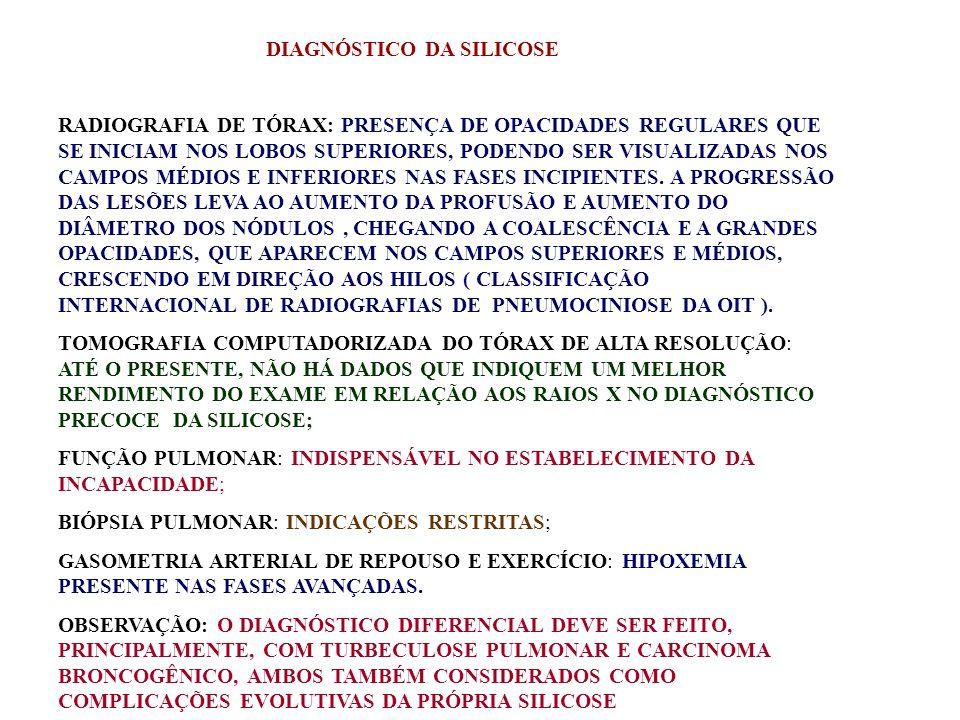 DIAGNÓSTICO DA SILICOSE RADIOGRAFIA DE TÓRAX: PRESENÇA DE OPACIDADES REGULARES QUE SE INICIAM NOS LOBOS SUPERIORES, PODENDO SER VISUALIZADAS NOS CAMPO