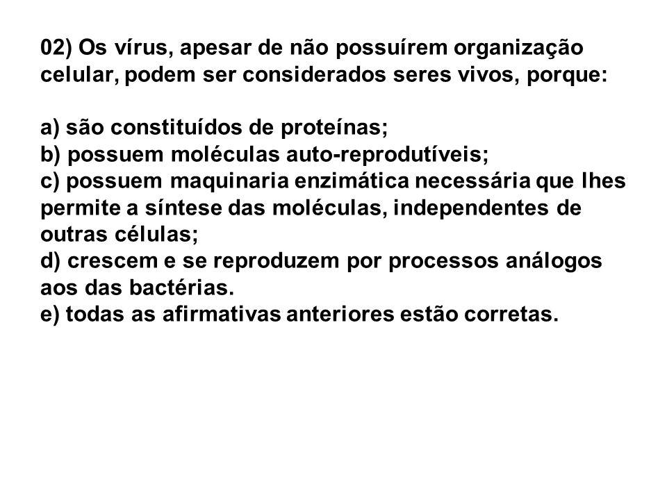 Quais são as principais características dos vírus?.