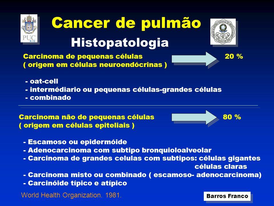 Cancer de pulmão Barros Franco Objetivos do Diagnóstico e Estadiamento 1.Definir o tipo histológico do tumor e suas relações com estruturas torácicas e árvore brônquica ( T ) 2.