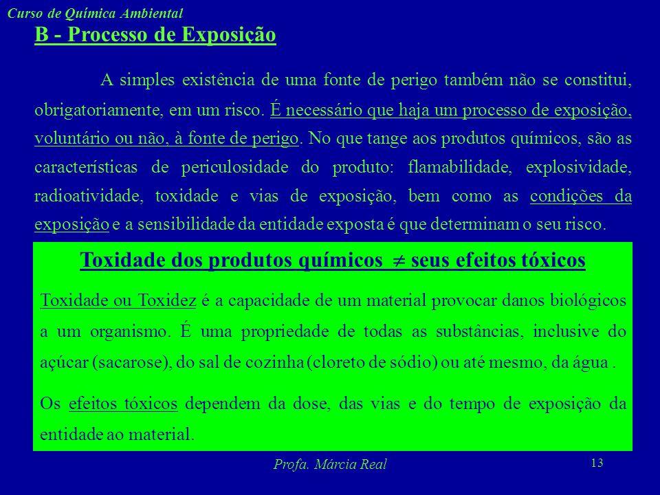 12 Curso de Química Ambiental Profa. Márcia Real CARACTERIZAÇÃO DO PROCESSO DE GERAÇÃO DE RISCOS Através dos componentes essenciais do risco, é possív