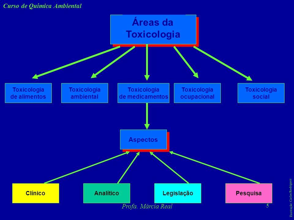 4 Curso de Química Ambiental Profa. Márcia Real Toxicologia - Toxidade é a capacidade relativa de uma substância provocar um dano a um sistema biológi