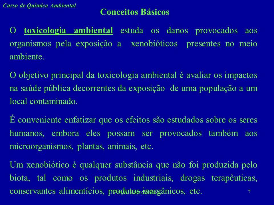 27 Curso de Química Ambiental Profa.