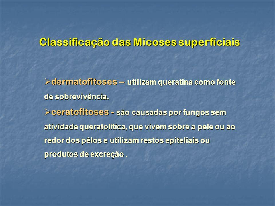 Classificação das Micoses superfíciais dermatofitoses – utilizam queratina como fonte de sobrevivência. dermatofitoses – utilizam queratina como fonte