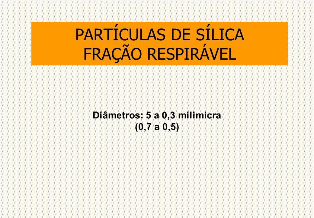 Diâmetros: 5 a 0,3 milimicra (0,7 a 0,5) PARTÍCULAS DE SÍLICA FRAÇÃO RESPIRÁVEL