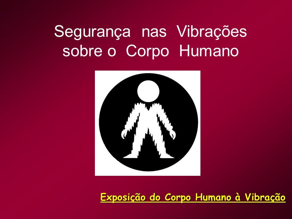 Segurança nas Vibrações sobre o Corpo Humano Exposição do Corpo Humano à Vibração