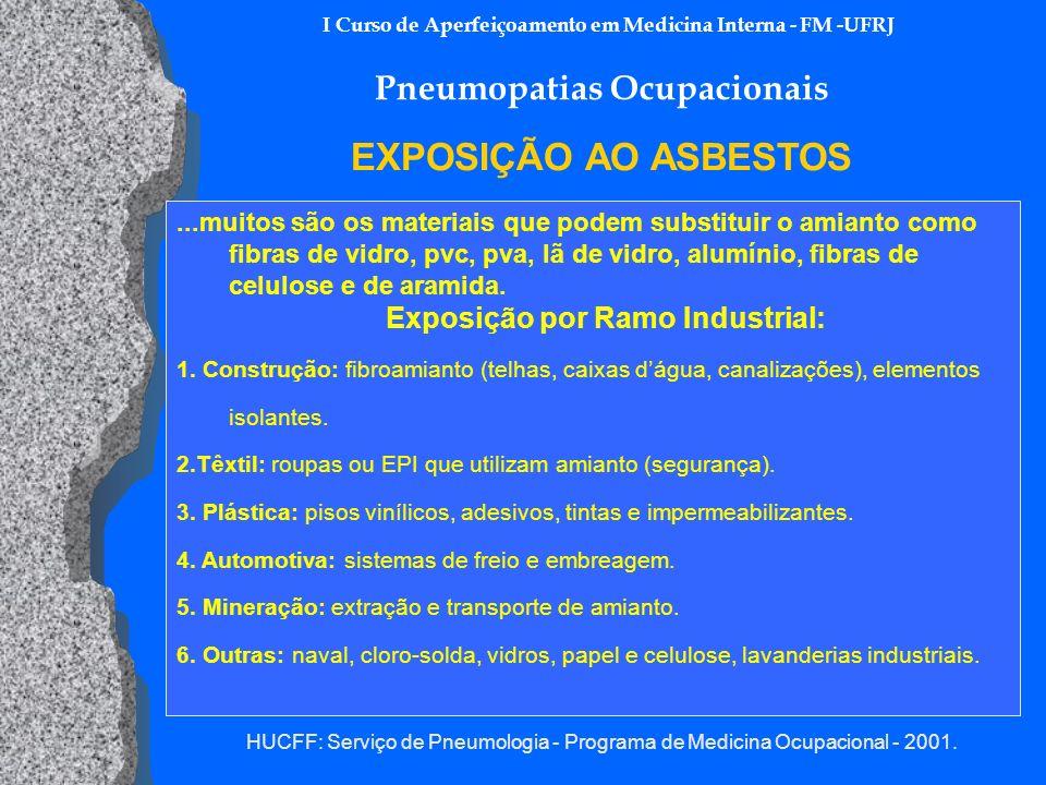 HUCFF: Serviço de Pneumologia - Programa de Medicina Ocupacional - 2001. I Curso de Aperfeiçoamento em Medicina Interna - FM -UFRJ Pneumopatias Ocupac