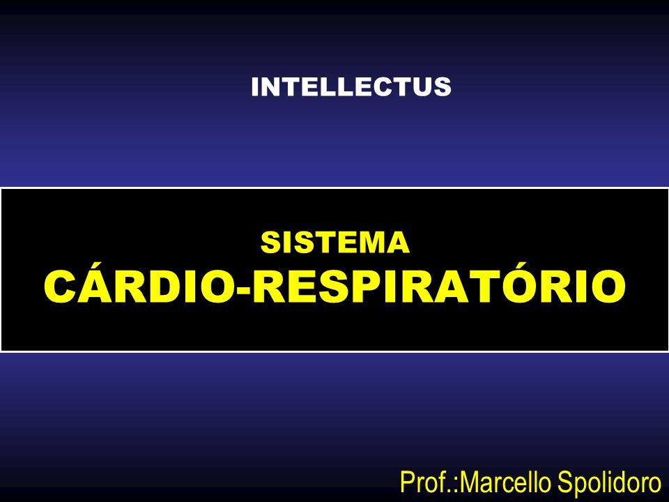 SISTEMA CÁRDIO-RESPIRATÓRIO Prof.:Marcello Spolidoro INTELLECTUS