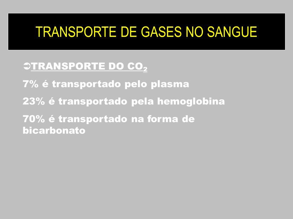 TRANSPORTE DE GASES NO SANGUE TRANSPORTE DO CO 2 7% é transportado pelo plasma 23% é transportado pela hemoglobina 70% é transportado na forma de bica