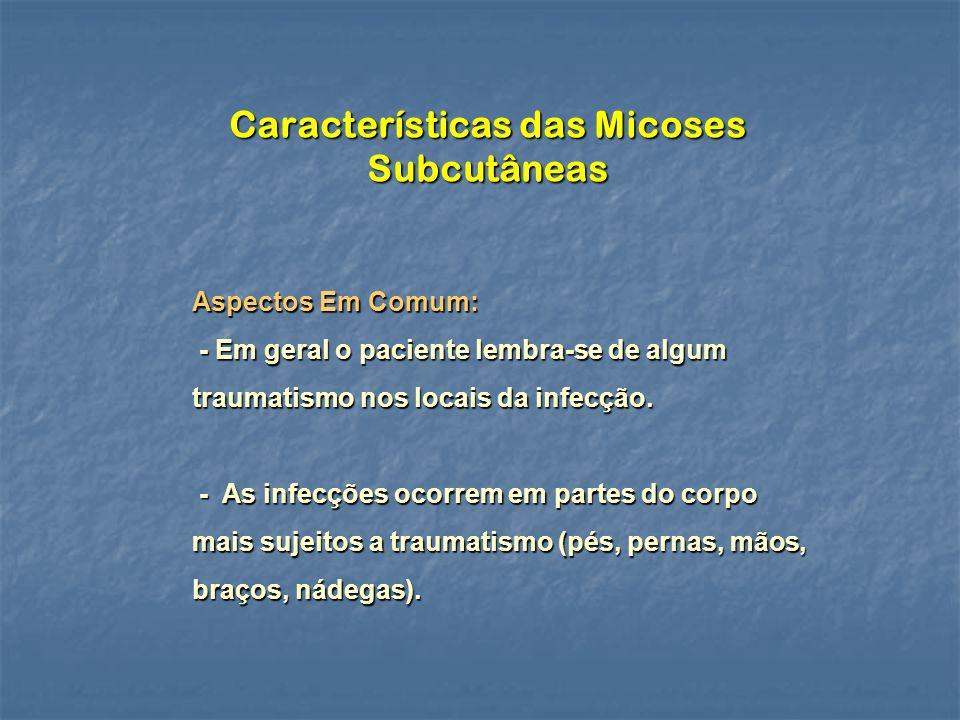 Características das Micoses Subcutâneas Aspectos Em Comum: - Em geral o paciente lembra-se de algum traumatismo nos locais da infecção.