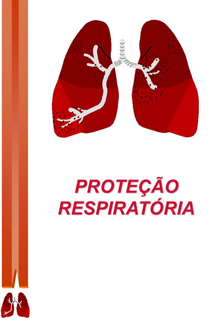 01 Introdução O sistema respiratório é constituído por um conjunto de órgãos que tornam possível a respiração normal.